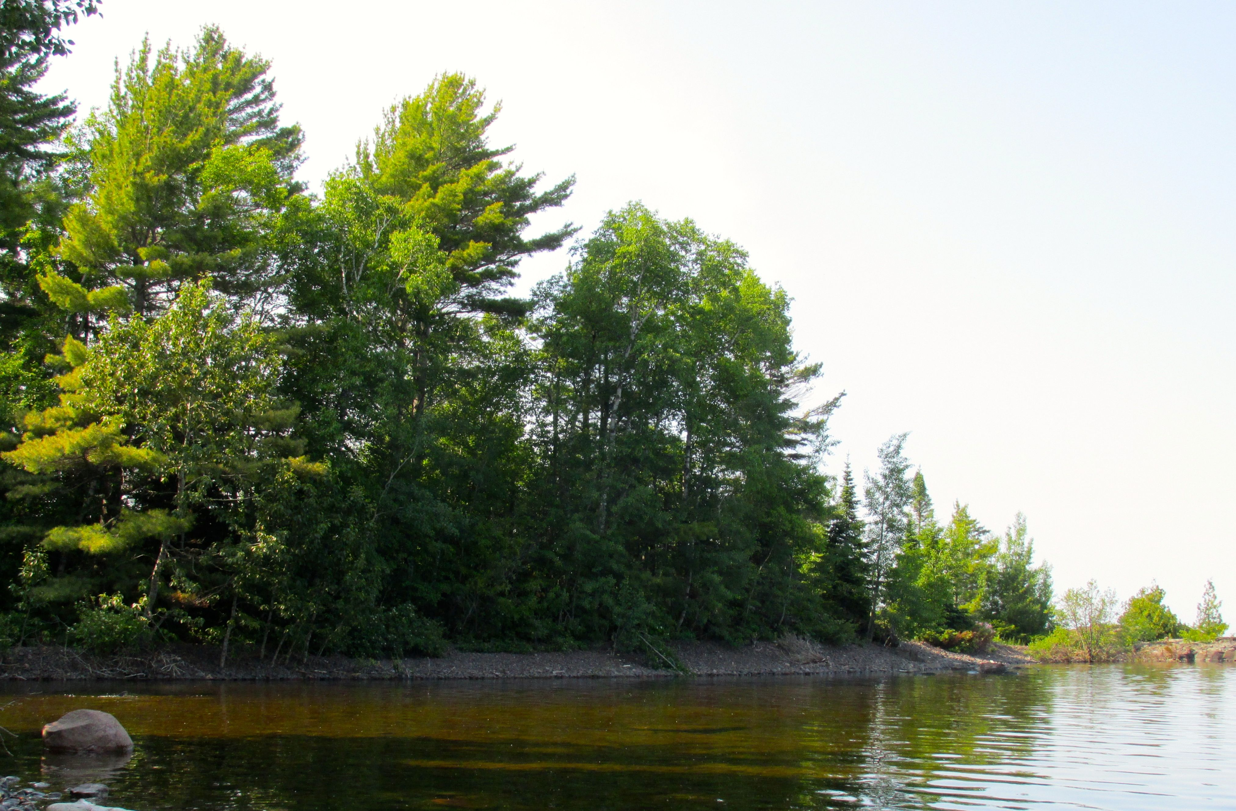 Copper Harbor water and trees