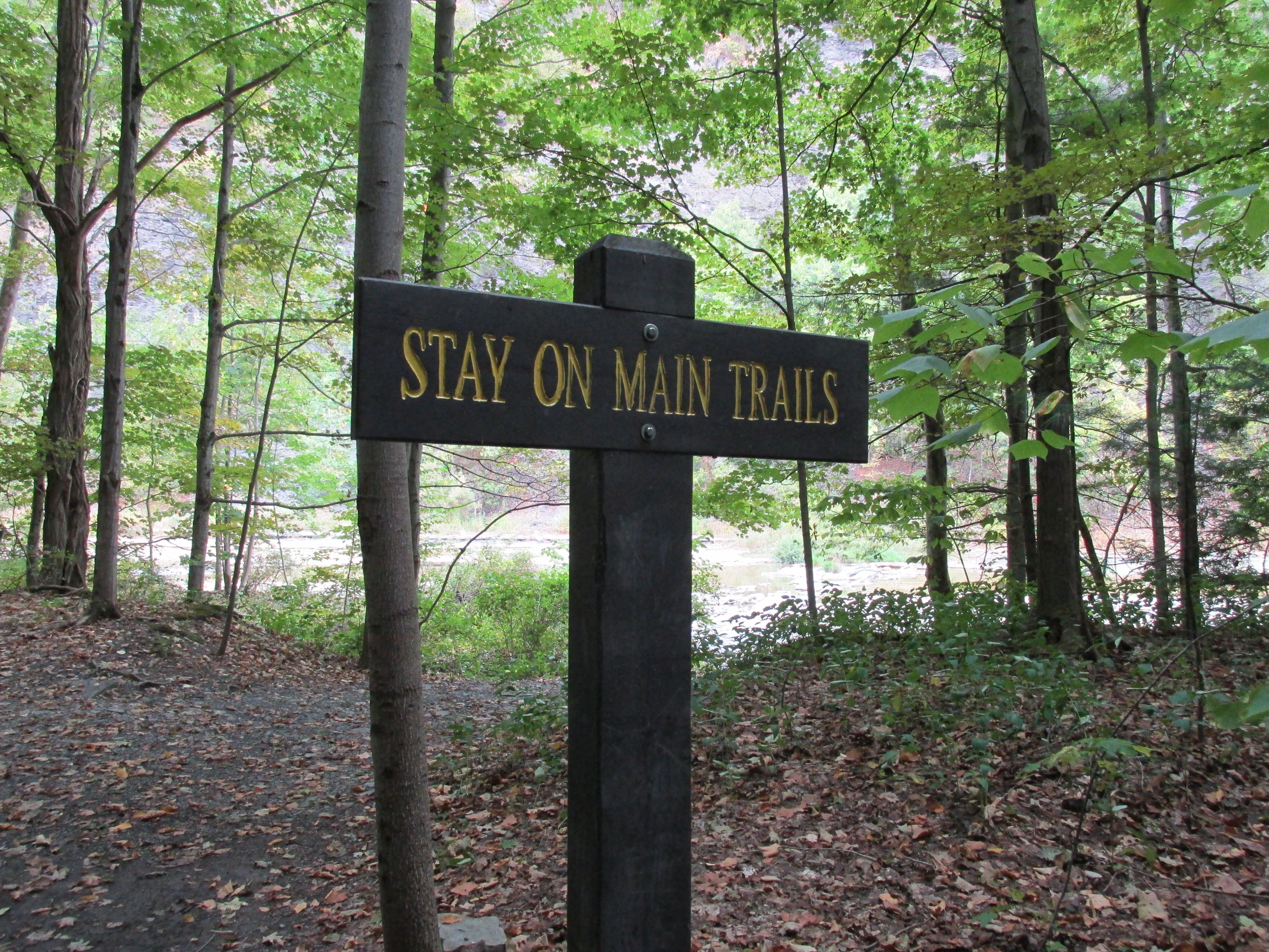 STAY ON MAIN TRAIL