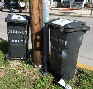 Coconuts Only
