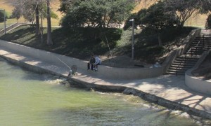 Bridge - fishing on the Brazos