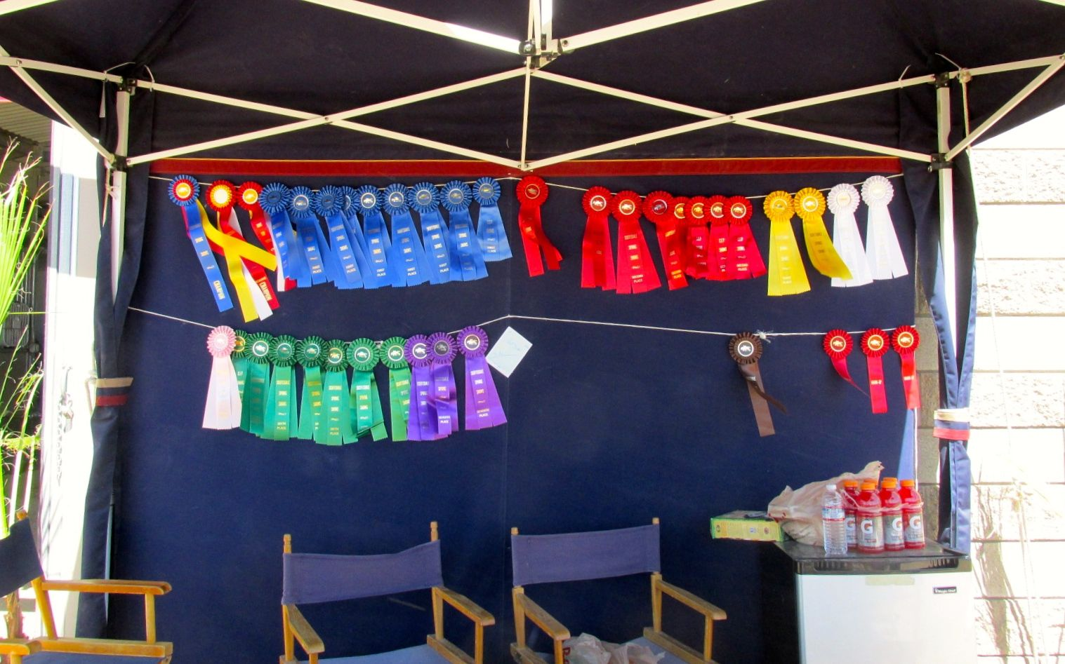 ribbons on display