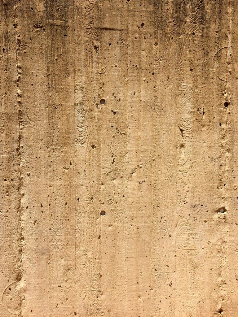 Wood impressions in cement