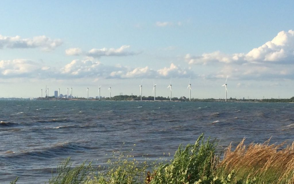 Buffalo skyline with windmills