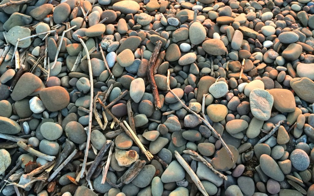 sticks and stones on the beach